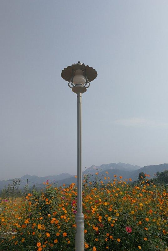 坤山农场风光